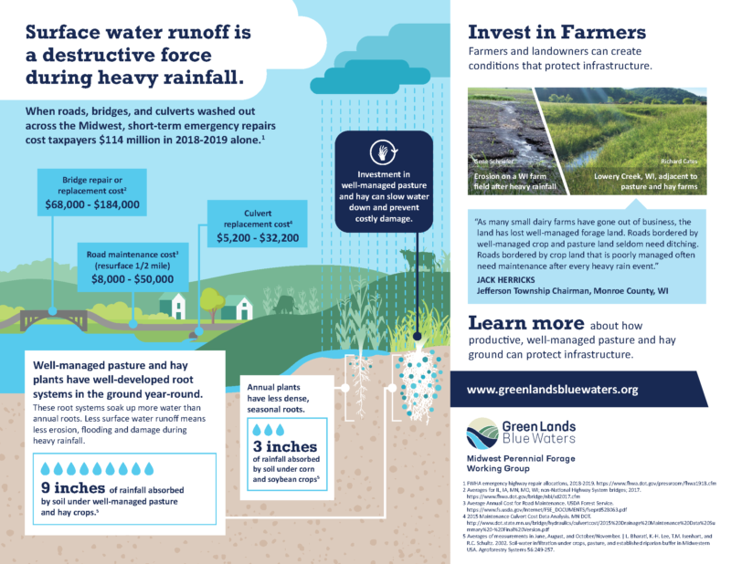 Infographic: perennial forage for infrastructure protection