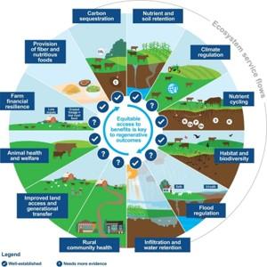 Regenerative Grazing Ecosystem Services Flows graphic